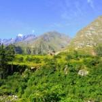 Machu Picchu 015