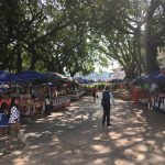 In the square with bustling market and beautiful colours