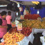 Fruit market in the street