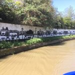 Murals painted along the tow path, they were quite spectacular