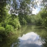 Lovely view as we entered the Oxford Canal.
